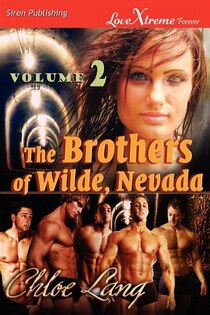The Brothers Of Wilde, Nevada, Volume 2 [running Wilde